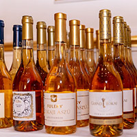 Winelovers Tokaj Exclusive