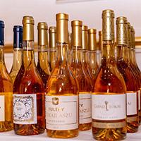 Winelovers Tokaj Exclusive